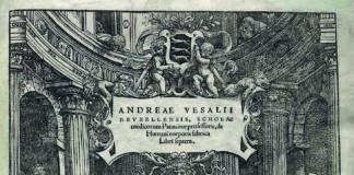 De Humani Corporis Fabrica libri Septem (immagine: it.wikipedia.org)