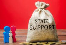 prestiti garantiti dallo stato